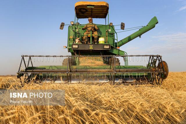 نرخ های خرید تضمینی محصولات کشاورزی به زودی ابلاغ می گردد