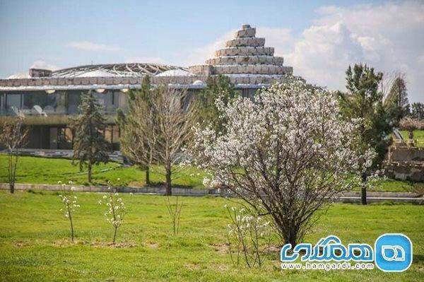 اعلام ممنوعیت بازدید از فرش گل کاخ مروارید