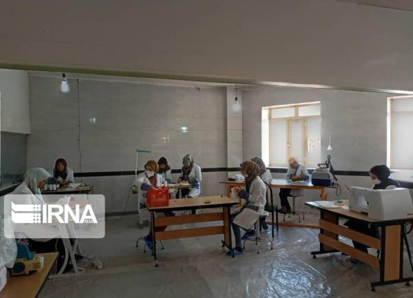 خبرنگاران 114 حرفه آموزشی برای روستاییان استان همدان اجرا شد