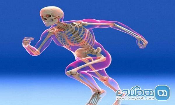 چه بیماری هایی سیستم اسکلتی بدن را درگیر می نمایند؟