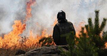 آتش سوزی 4 هزار هکتار از جنگل های روسیه