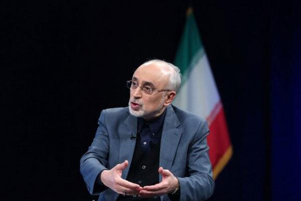 صالحی: مسائل فنی نیروگاه بوشهر حل شده است